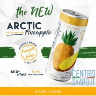 Arctic Pineapple 50 ml Mix & Vape